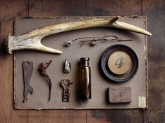 trophy wife | Flickr - Photo Sharing! #antler #objects
