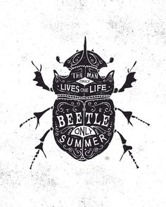 Selected illustrations on Behance #quote #type #illustration #beetle