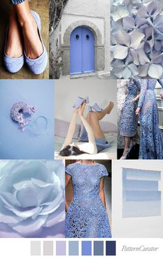 PERIWINKLE POWDER – Pattern Curator