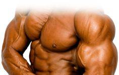 bodybuilder-tan.jpg (748×477)