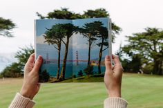 A unique locals guide to San Francisco #creative #moneal #instagram #tips #travel #san #sf #francisco #local