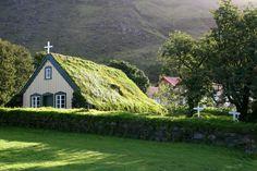 #tejados #verdes #green #roofs