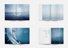 Best Awards Designworks. / Ora King Photography #design #graphic