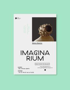 imaginarium #poster #design #typo #art