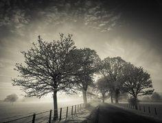 Photography by Mark Littlejohn #inspiration #photography #landscape