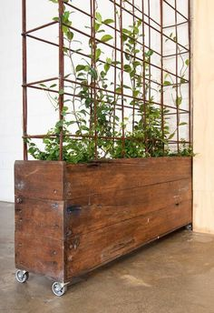 designer industrial planter boxesmade by industrial designer Drew Sinclair @ bangsboutique. made from reclaimed Australian hardwood with ste