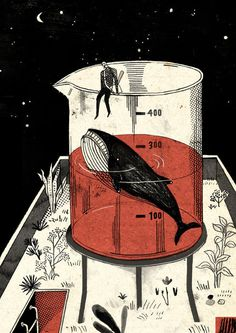 Knock the whale out/敲昏鯨魚 #illustration
