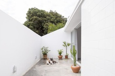 Roof patio open to the sky. 711H House by BLOCO Architects. © Joana França.