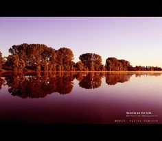Photography by Dominik Fusina #photography