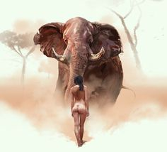 Fearless on Behance #naked #elephant #africa #wild #fearless