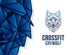 Geometric Wolf | CrossFit Crywolf Gym #logo #wolf #gym #fitness #geometric