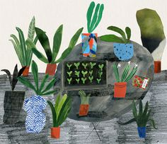 Pot Plants Outside giclee print #lewis #emma