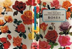 Chimes&Rhymes | innovative design and new techniques in visual artistry #encyclopedia #roses #pocket