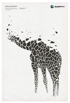 STAR GRID POSTERS + SANTAMONICA '10/11 on the Behance Network #giraffe #tshirt