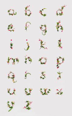 Typography by Anna Lee #flora #alphabet #flower #type #typography