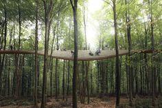 The Treetop Experience by EFFEKT
