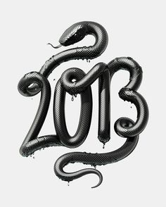 2013 - Year of the Black Water Snake #typography #lettering #3d