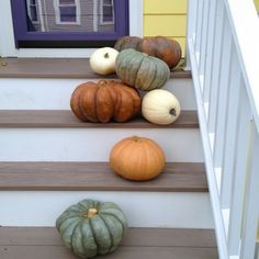 photo 62 #interior #pumpkin #design #deco #decoration