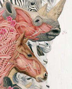 Tiffany Bozic #painting #art #animals