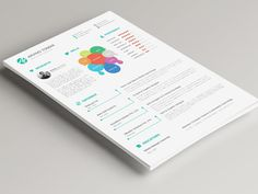 Tomar Resume - Free Illustrator Resume Template with Infographic Style