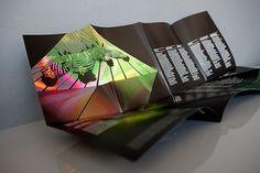 Luminous – Festival Branding | Monogram #monogram #brochure