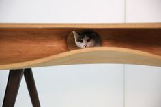 CATable by Hao Ruan_dezeen_4 #design #cat #wood #furniture #industrial #table