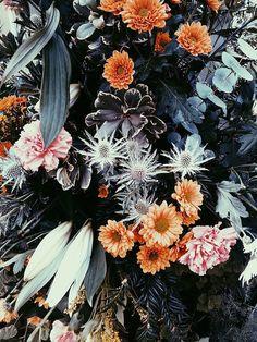 flowers, pattern