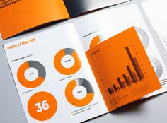 Mucho IsGlobal #graphs #infographics #print #annual #report #editorial