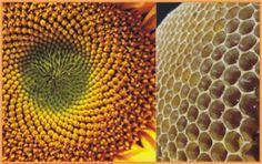Shape Shifting Surfaces on Aluminum Trim #sacredgeometry #roxxtwospirit #hexagon