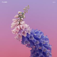 flume skin cd album cover artwork
