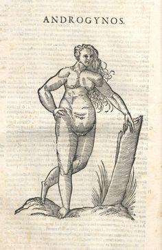 000052 #naturalism #aldrovandi #illustration #latin #ulisse #monster #drawing