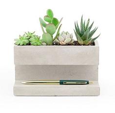 Concrete Desktop Planter & Organizer