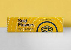 packaging, roses, flowers, box, identity, branding