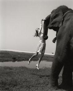 Elisabeth Toll » Elephant : LUNDLUND #photography #girl #elephant