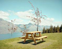 Emily Shur #photography #nature
