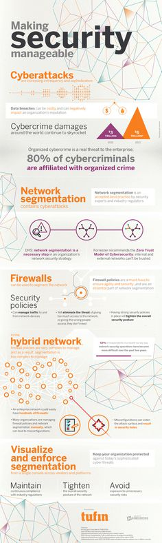 network segmentation infographic