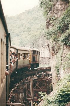 observando #train #ride #journey #photography #rail #carriages #jungle