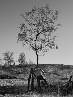 CJWHO ™ (Tree People by Marko Prelic Surreal portraits of...) #design #landscape #photography #art #surreal