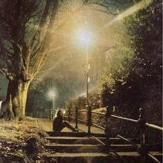 [3197662832_a0577d5a9c_b.jpg] #night