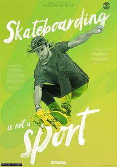 Skateboarding is not a sport Wild Irish Rose brush script font by It's me simon