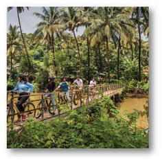 https://pinclone.net/demo/pin/electric-cycle-tours-in-cansaulim/