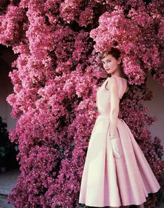 Norman Parkinson - Audrey Hepburn and bougainvillea - Photos - Photohab - Photographer's Portfolios #fashion #photography #inspiration