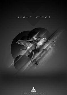 Night Wings #davis #night #behance #lyndel #wings