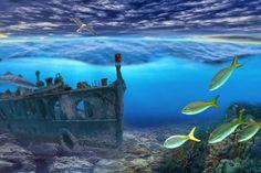 sea wreck #ocean #wreck #fish #sea