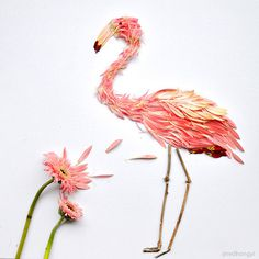 Birds Made of Flower Petals and Leaves by Red Hong Yi #sculpture #bird #illustration #art #dimensional