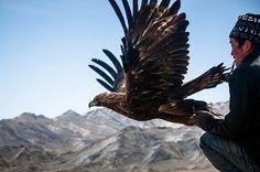 Mongolian eagle festival #images #festival #mongolian #eagle #photography