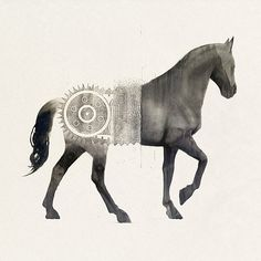 FFFFOUND! | Afghanistan « Sam Weber #illustration #graphic #horse #samweber #acad