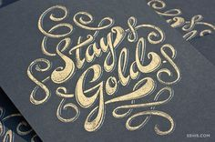 Stay Gold Print | 55 Hi's | A Design Collective #type #lettering