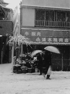 ☺ A blog for birds... #umbrella #snow #photography #japan #winter