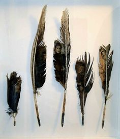 Visual Confetti: currently + loving   louise richardson #portrait #painting #feathers